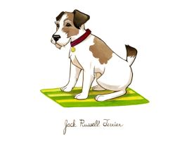 Jack Russell Terrier by MonicaMcClain