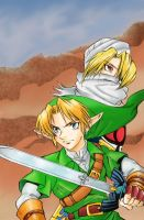 Link and Sheik by Sifty