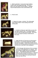 Sculpting Tutorial Part 2 MLP by colorscapesart