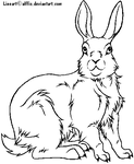 Rabbit lineart -Free to use- by Alffis