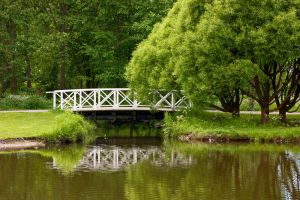 A Bridge by jusuart-stock