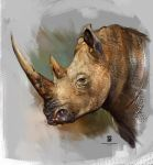20151210 Rhino Psdelux by psdeluxe