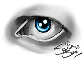 Old Eye by Chrisily