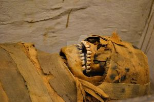 Mummified Remains by InnsmouthFishwife
