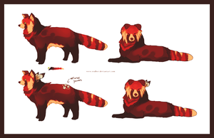 Boder collie - Red panda by Endber