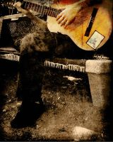.:: The Guitar Man ::. by V511