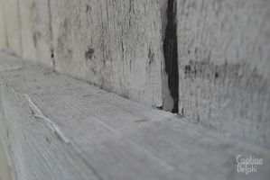 Weathered Wood by CaptianDelphi