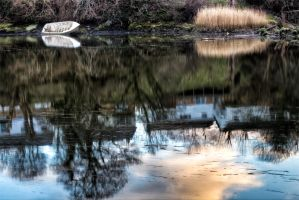 Reflection by CharmingPhotography