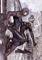 Spidey and Felicia - Coloured by MacLPirata