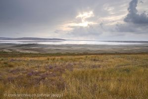 Crimean Steppe by iconicarchive