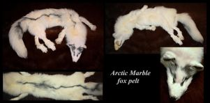 artic marble fox pelt by Nimgaraf