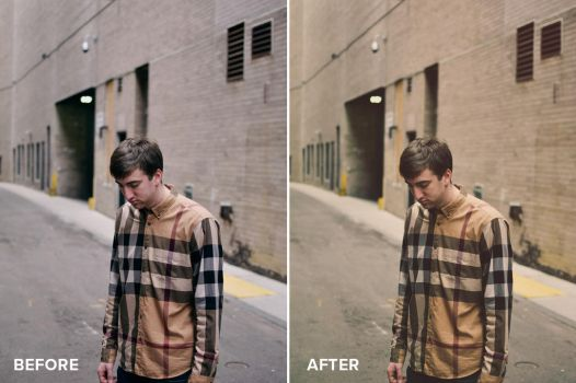 Matte Series Photoshop Actions Before/After 6 by filtergrade