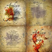 Avelian-norway-symphonic-acoustic-cd-vinyl-cover-a by MOONRINGDESIGN