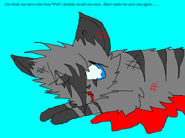 Feathertail\'s death by kitkat66666