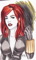 Daily Sketch - Black Widow by illust888