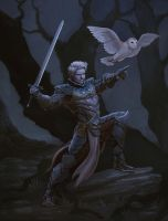 halfdrow fighter by count-joshula