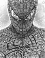 Young Peter by Wanted75