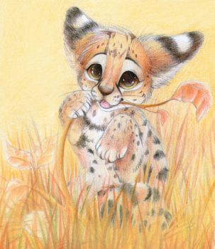 Serval cub by PixelRaccoon