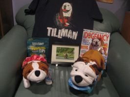 Tillman Collection by LeaveItToVi