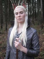 The Elvenking by lethal-kitteh