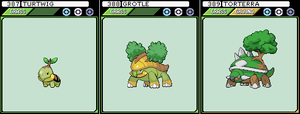 Turtwig, Grotle and Torterra