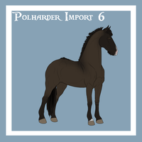 Polharder Import 6 by blanjojo
