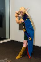 My Deedlit cosplay at Omgcon 2014 by Ceraine