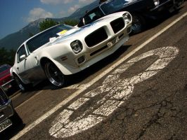 number eight by AmericanMuscle