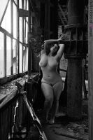 Beauty and Industry Plate 365 by nolaphoto