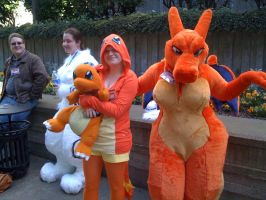 Charizard and Charmander by SpringDasie