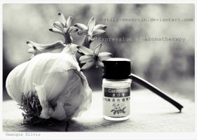 Expression of aromatherapy by still-searchin