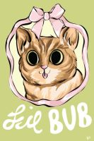 Lil BUB by MaryAQuiteContrary