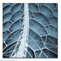 Eden Project by infiltrator