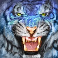 Sapphire Tigris by Decadia
