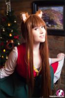 Christmas Eve by Foxy-Cosplay