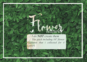 Flower textures collection by JeedoriFox