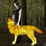 The golden wolf by Chronophontes