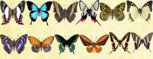 Mac Icons - Butterflies Set 3 by Nastino47