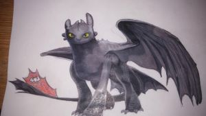 Toothless by CalleStar