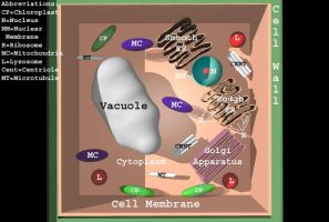 Bryce Plant Cell Labeled by wierdstickdude