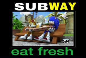 Subway by animorphs5678