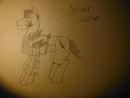 silver hunter the ex-demon hunter now personal ... by Antidotethelizard