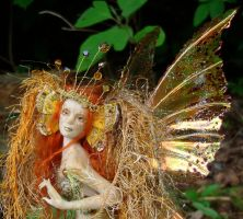 Golden Butterfly Fairy closeup by elvenelysium