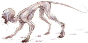 Eyeless and Hairless Monster by AccursedAsche
