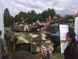Tychy - August 2014 - Armed Forced Day - Twardy by Chakat-Northspring