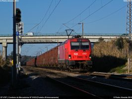 40 wagons is nice 160212 by Comboio-Bolt