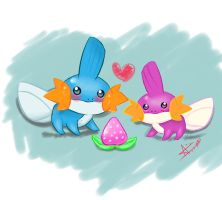 mudkip couple by ivando