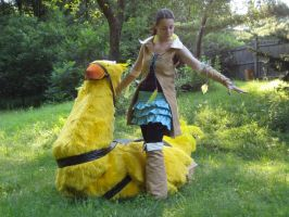 Chocobo Rider by chinako