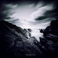 Rock by incisler