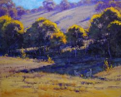 Australian summer Colours by artsaus